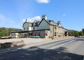 Thumbnail Hotel/guest house for sale in Rowan Tree Country Hotel, Loch Alvie, Nr Aviemore