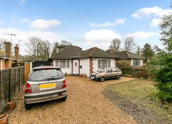Thumbnail 3 bed bungalow for sale in Balcombe Road, Horley, Surrey