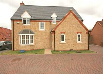 Thumbnail 4 bed property to rent in Thorn Road, Hampton Hargate, Peterborough