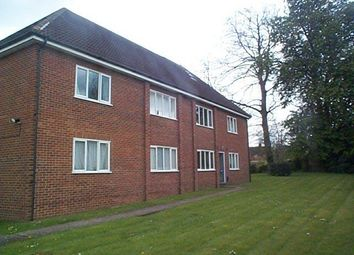 Thumbnail Studio to rent in Cedars Court, The Cedars, London Road, Guildford
