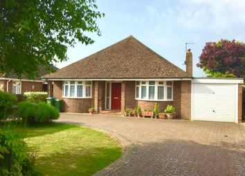 Thumbnail 2 bed bungalow for sale in Gossamer Lane, Rose Green, Bognor Regis, West Sussex