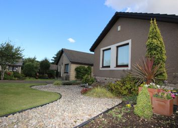 Thumbnail 4 bed detached bungalow to rent in 21 Rennie Place, East Linton
