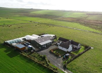 Thumbnail 4 bed detached house for sale in Gricegarth, South Ronaldsay, Orkney