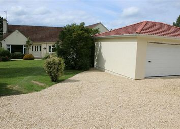 Thumbnail 5 bed detached bungalow for sale in Plough Lane, Kington Langley, Chippenham