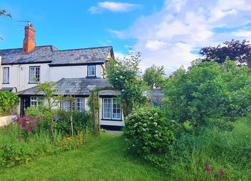 Thumbnail Cottage for sale in Mill Street, Sidmouth