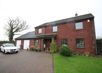 Thumbnail 4 bed detached house for sale in Cargo, Carlisle, Cumbria