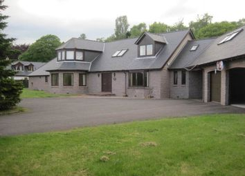 Thumbnail 6 bed detached house to rent in Oathlaw, Forfar