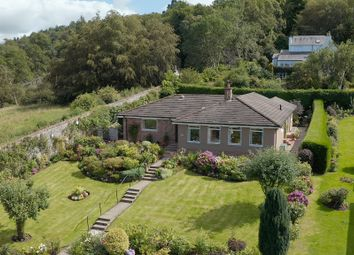Thumbnail 5 bed bungalow for sale in Bellwood Estate, Dundee Road, Perth, Perthshire