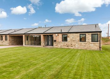 Thumbnail 3 bed barn conversion for sale in Meadow View, Bradley Hall Farm, South Wylam, Northumberland