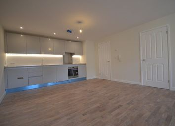 Thumbnail 1 bed detached house to rent in - Glebe Road, Chelmsford, Chelmsford
