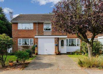 Thumbnail 5 bedroom semi-detached house for sale in Pear Tree Close, Broadstairs