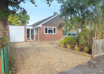 Thumbnail 3 bed bungalow for sale in Oakwood Avenue, New Milton, Hampshire