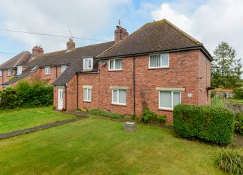 Thumbnail 3 bed property for sale in Chestnut Avenue, Blean