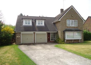 Thumbnail 4 bed detached house to rent in Beech Crescent, Darrington