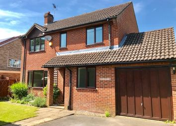 Thumbnail 4 bed detached house to rent in The Grove, Liphook