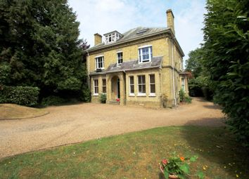 Thumbnail 2 bed flat to rent in Blackborough Road, Reigate
