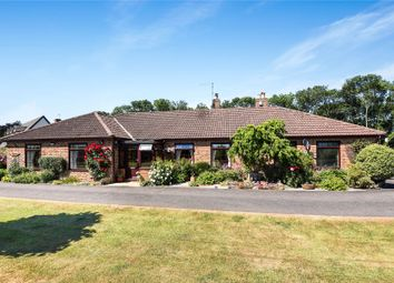 Thumbnail 3 bed bungalow for sale in Aswardby Road, Harrington