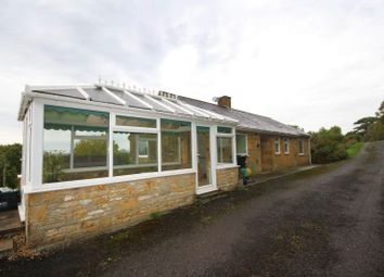Thumbnail 2 bed detached bungalow to rent in New Road, Yeovil