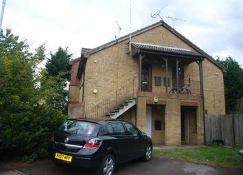 Thumbnail Studio to rent in Coverdale, Luton