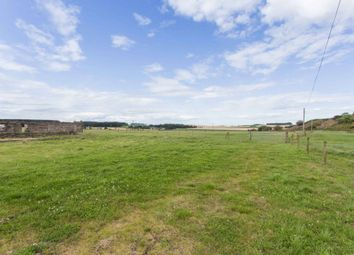 Thumbnail Land for sale in Drummygar Farm, Carmyllie, Arbroath, Angus