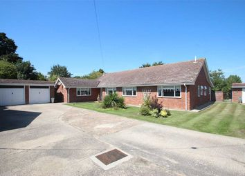 Thumbnail 6 bed bungalow for sale in Alpha Road, St. Osyth, Clacton-On-Sea