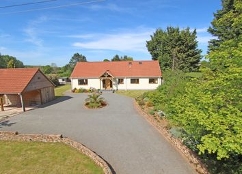 Thumbnail 4 bedroom detached bungalow for sale in Westcott, Cullompton