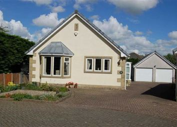 Thumbnail 2 bed detached bungalow for sale in Rivermead Court, Garstang, Preston