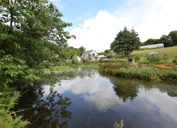 Thumbnail 4 bed detached house for sale in Bradworthy, Holsworthy