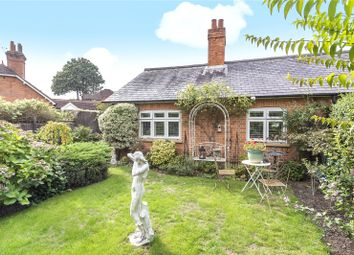 Thumbnail 3 bed semi-detached bungalow for sale in Chobham Road, Ottershaw, Surrey
