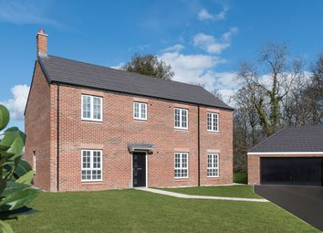 "Thumbnail 4 bedroom detached house for sale in ""The Kensington"" at Hartburn, Morpeth"