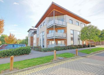 Thumbnail 2 bed flat for sale in Millicent Grove, London