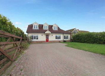 Thumbnail 5 bed bungalow for sale in Main Road, Kesgrave, Ipswich