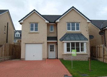 Thumbnail 4 bed detached house to rent in Balquharn Drive, Portlethen, Aberdeenshire