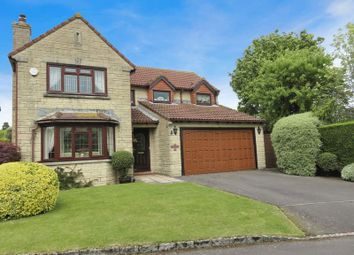 Thumbnail 4 bed detached house for sale in Beaufitz Place, Tatworth, Chard