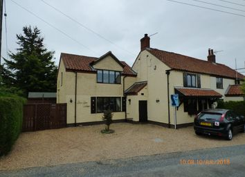 Thumbnail 4 bed cottage to rent in Low Road, Haddiscoe, Norwich