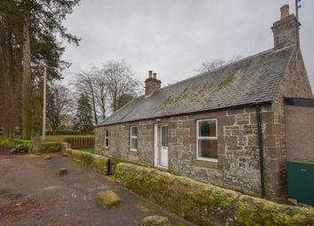 Thumbnail 3 bed detached house to rent in Balkeerie, Eassie, Angus