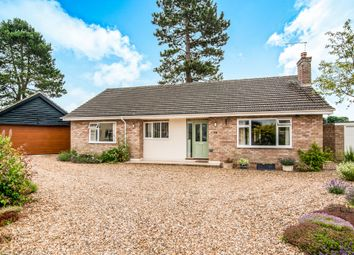 Thumbnail 4 bedroom detached bungalow for sale in Newcombe Drive, Feltwell, Thetford
