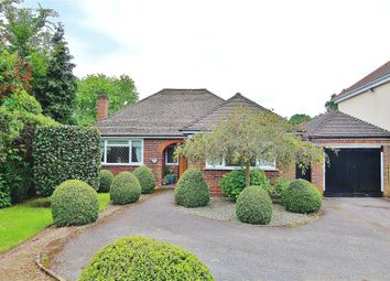 Thumbnail 2 bed detached bungalow for sale in Bisley, Surrey