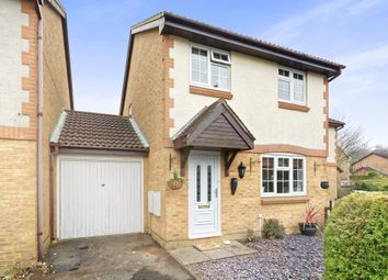 Thumbnail 3 bedroom detached house for sale in Lapin Lane, Basingstoke