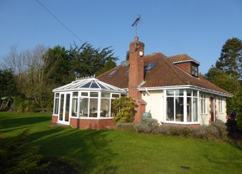 Thumbnail 4 bedroom detached bungalow for sale in London Road, Beccles