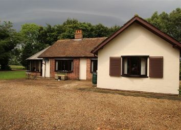 Thumbnail 3 bedroom bungalow to rent in Crossroads, Banham, Norfolk