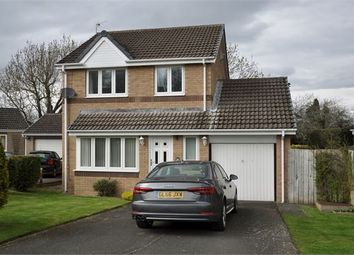 Thumbnail 3 bed detached house for sale in Oak Close, Hexham