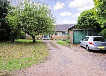 Thumbnail 4 bedroom detached bungalow for sale in Cupernham Lane, Romsey, Hampshire