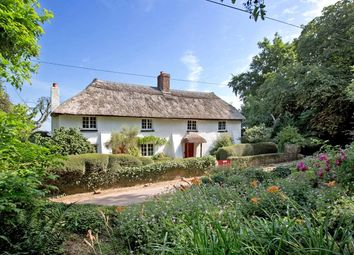 Thumbnail 4 bedroom detached house for sale in Tale Common Head, Payhembury, Honiton