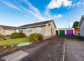 Thumbnail 2 bed semi-detached bungalow for sale in Garvock Avenue, Montrose