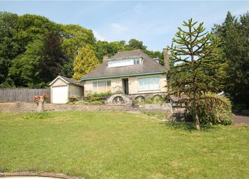 Thumbnail 2 bed detached house for sale in Castle Hill Lane, Mere, Warminster, Wiltshire