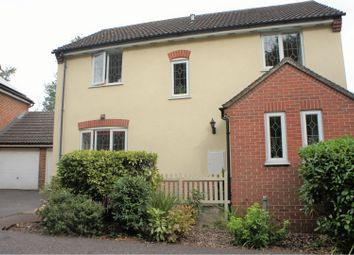 Thumbnail 4 bed detached house for sale in Admirals Walk, Chelmsford