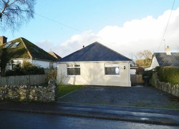 Thumbnail 2 bed detached bungalow to rent in Forton Road, Chard