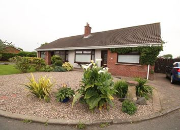 Thumbnail 2 bedroom bungalow for sale in Erindee Avenue, Donaghadee