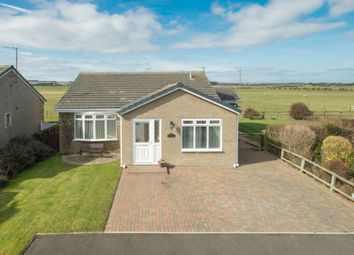 Thumbnail 4 bed bungalow for sale in 7 Bowmere, Boulmer, Northumberland
